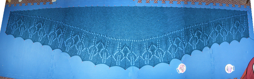 Panorama_Shawl