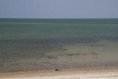 20120416 - April Beach Day