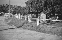 Pioneer Park - Cemetery Headstones viewed from Union St c1968