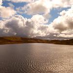 Lake Teifi