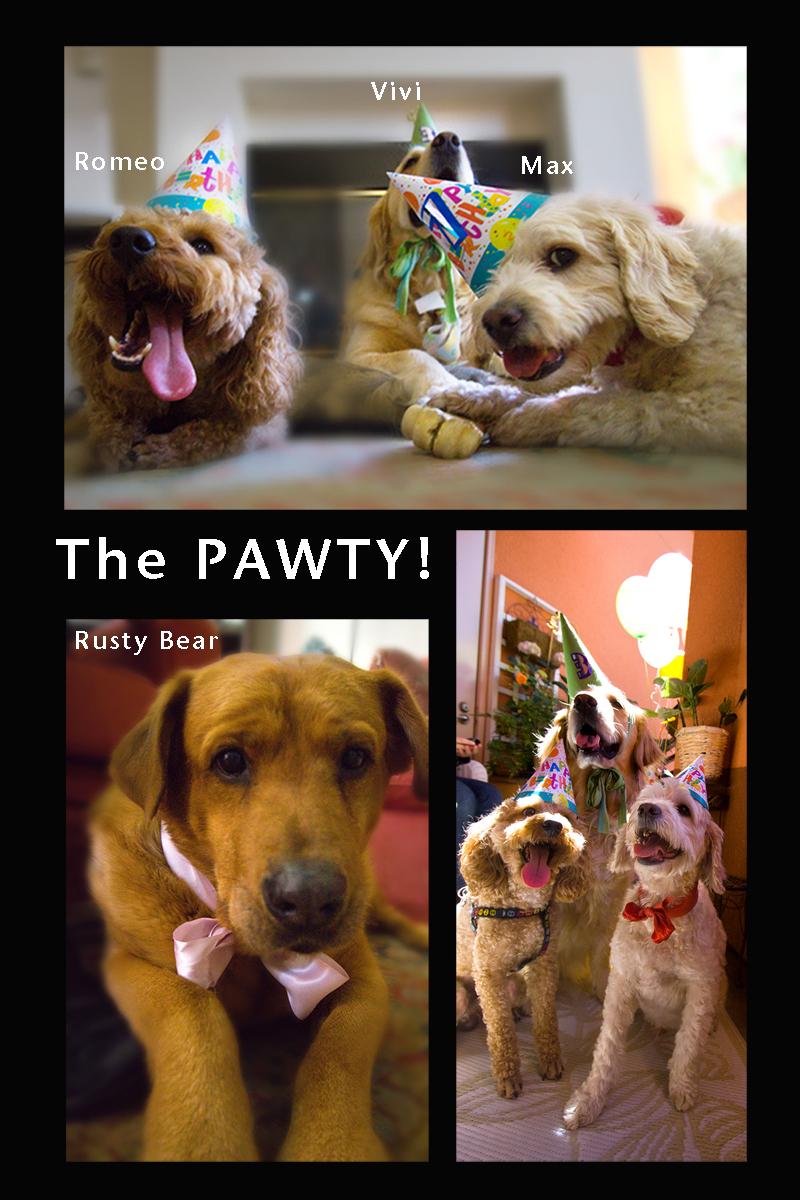 Pawty Dawgs
