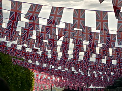 bunting as far as the eye can see...