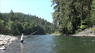 Skagit Switch Cast