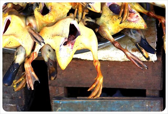 battambang market ducks