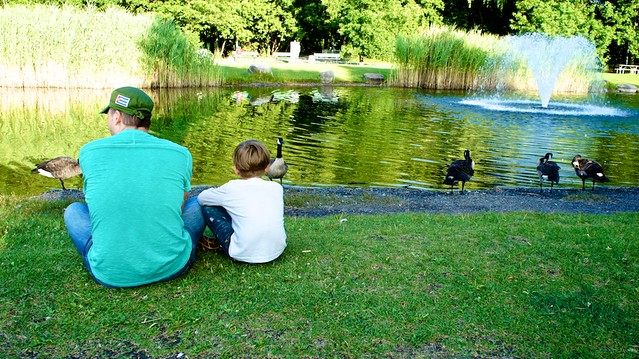 anteketborka.blogspot.com, parc7