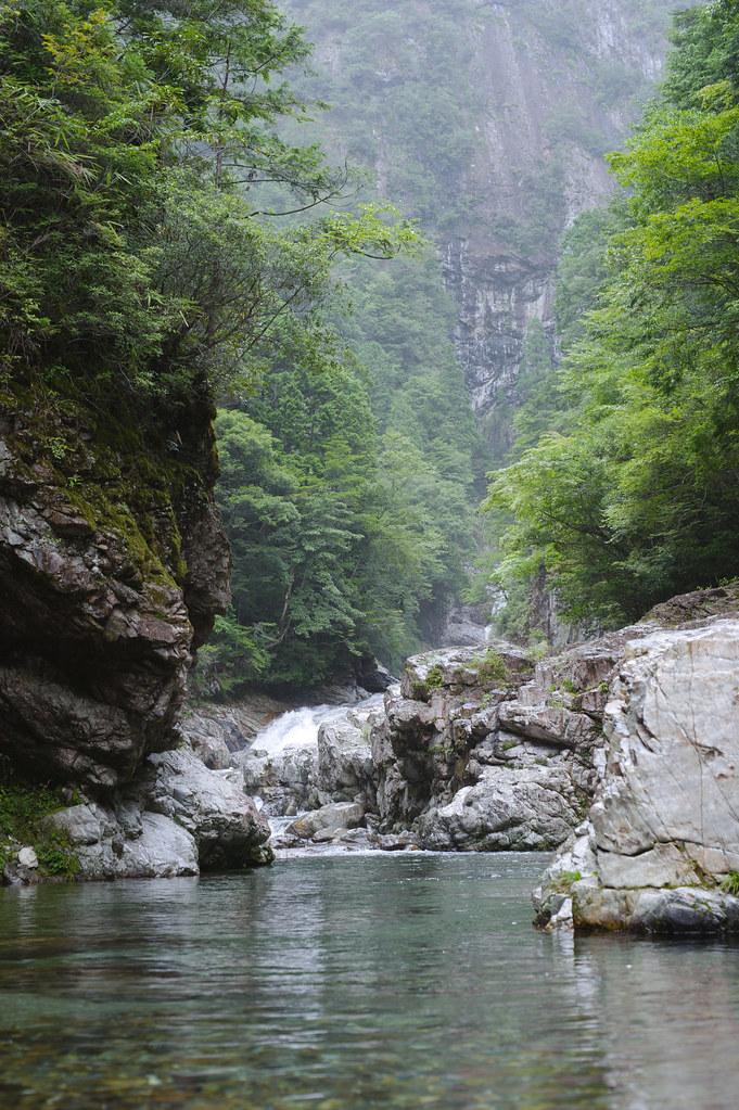 Nara Zenki