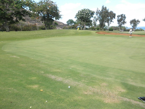 Makaha Valley Country Club 040