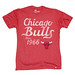 Vintage Chicago Bulls T-Shirt Since 1966