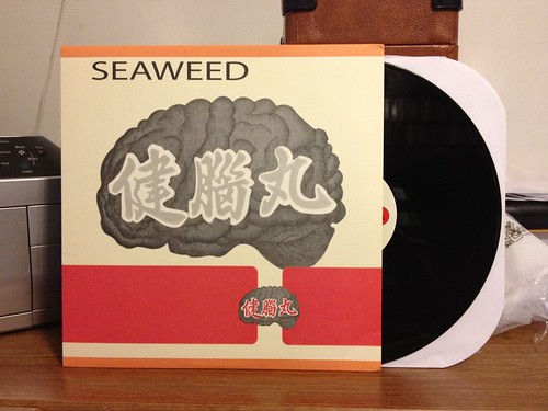 Seaweed - Actions & Indications LP by Tim PopKid