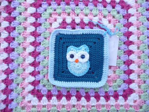 'Owl Challenge'.