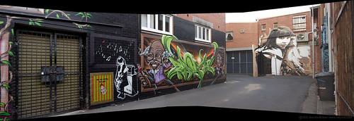 urban panorama streetart graffiti australia nsw lismore backalleygallery
