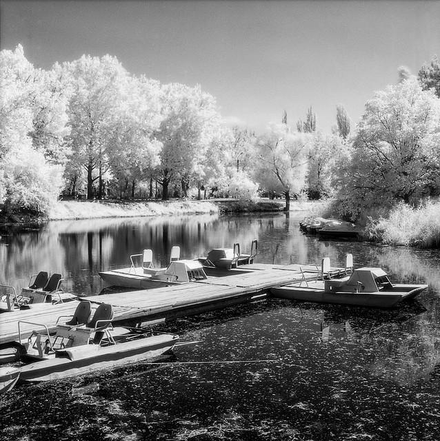 Lake in Gagarin's park
