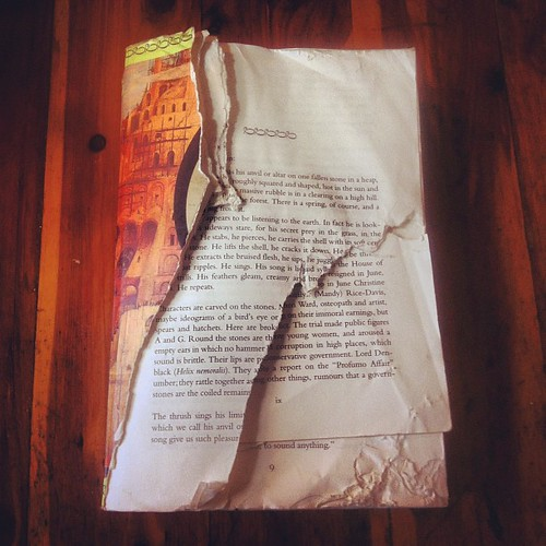 Finding myself immersed in A.S. Byatt 's Babel Tower again. This copy was severely mauled by my dog a while back. Guess she wasn't a fan of it? It really is so good, though.