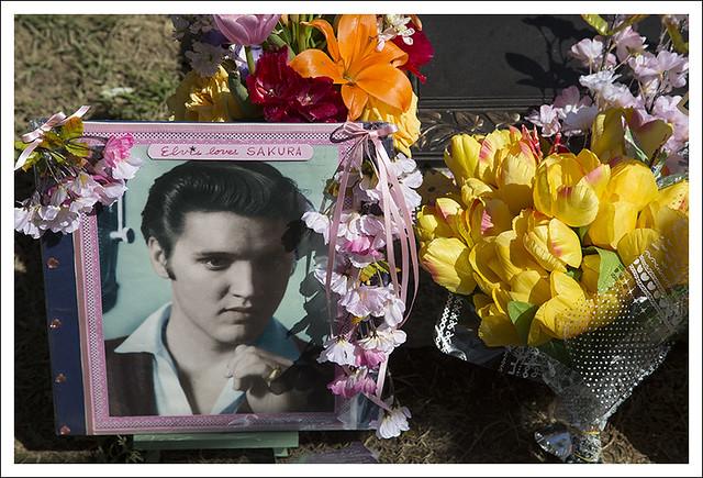 Elvis' Grave 2