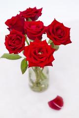 Red Roses in Vase - Fragrance Direct