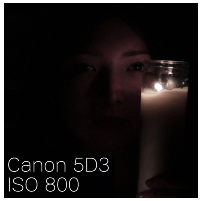 canon5d3_iso800_100percentCROP