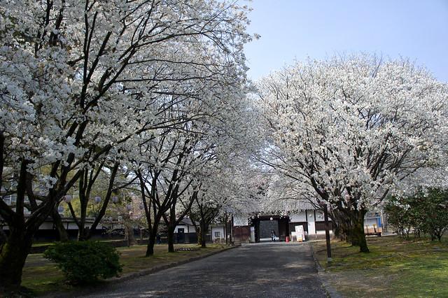 2012-kyushu-462