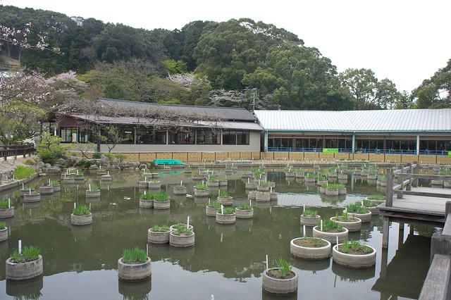 2012-kyushu-673