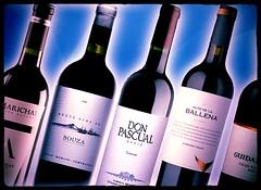 25 vinos uruguayos que no pueden dejar de probar