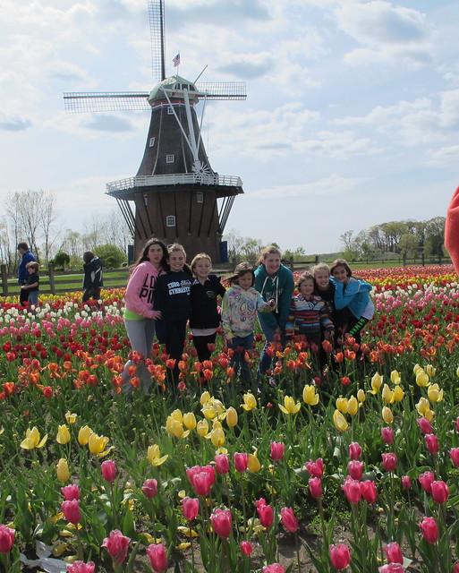 Windmill Island Holland Mi Flickr Photo Sharing