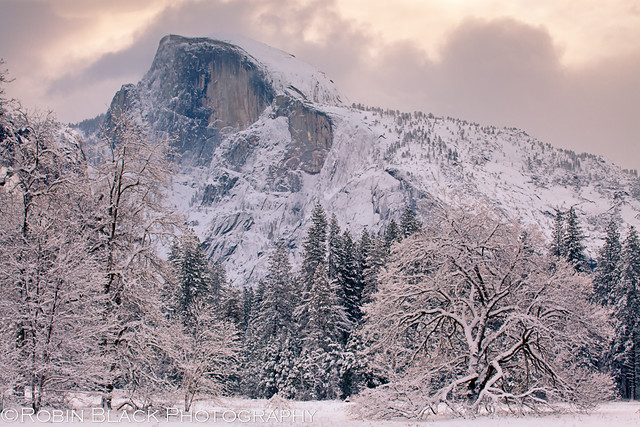 Snowy Cook's Meadow with Half Dome (Yosemite)