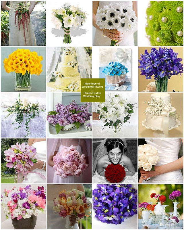 Wedding Flowers Meaning: Popular Wedding Flowers & Their Symbolic Meanings