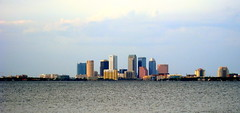 Tampa - Ballast Point Park - Downtown Tampa Skyline