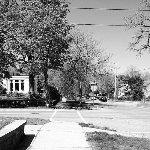 Street. by MattsLens
