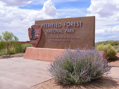 Petrified Forest Official Sign