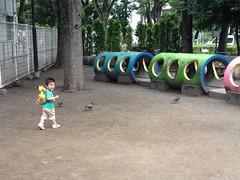 朝散歩 恵比寿公園 (2012/7/5)
