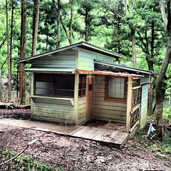 woodland, garden buildings, hut, wood, shack, cottage, house, log cabin, outhouse, shed, home, rural area,