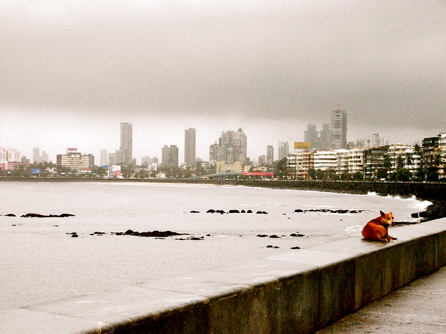 A foggy morning in Mumbai.