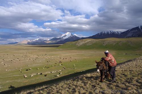 shadow sky snow mountains clouds landscape asia pentax shepherd ombre ciel asie neige nuages sheeps moutons steppe k5 montagnes berger kirghizistan paysaghe