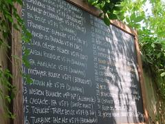 Vices et Versa Beer List