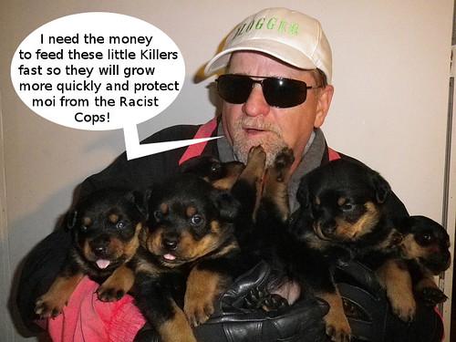 killerdogs