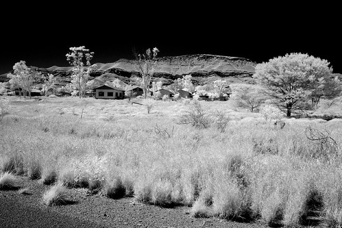 The last Houses in Wittenoom