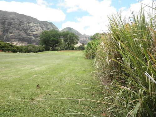 Makaha Valley Country Club 188