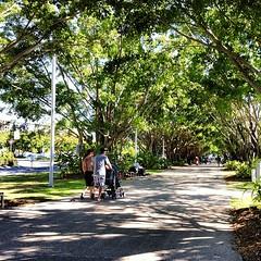 Cairns Esplanade, Cairns, Australia