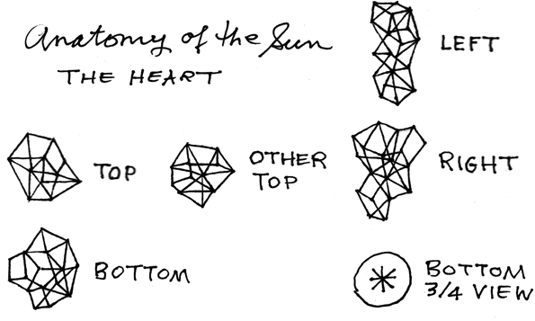 Anatomy of the Sun: The Heart, by Penina S. Finger