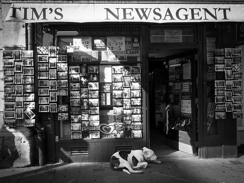 Tim's Newsagent