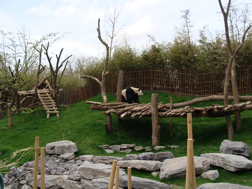 Pairi Daiza animal park