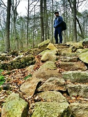 One step at a time Appalachian Trail Mountains Nature Portrait at fitzgerald falls