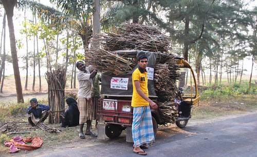 205 Cox Bazar (47)