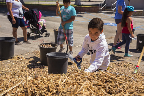 Celerity Charter School Planting - 4/23/16