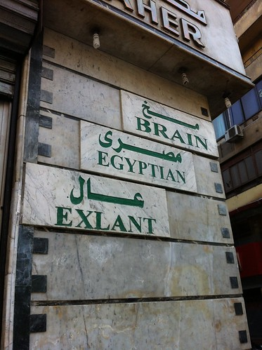 The excellent Egyptian brain?