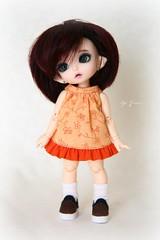 FairyLand PukiFee Luna