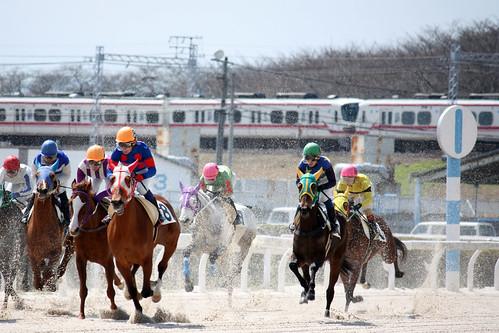 笠松競馬場 / Kasamatsu Racecourse