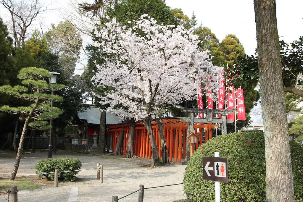 At Suizenji Park, Kumamoto, Kyushu, Japan