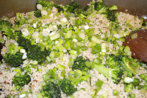 green rice/scallions