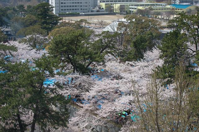 2012-kyushu-213